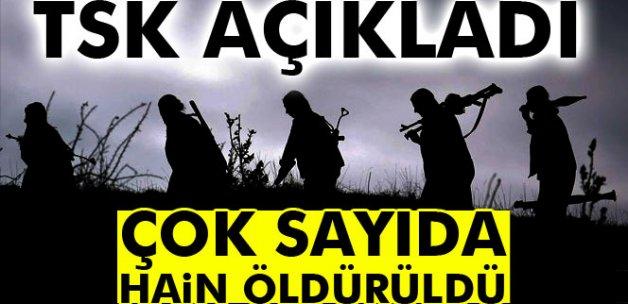 TSK açıkladı: 12 terörist daha öldürüldü