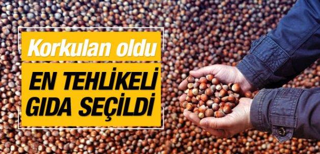 Türk fındığı en tehlikeli gıda seçildi!
