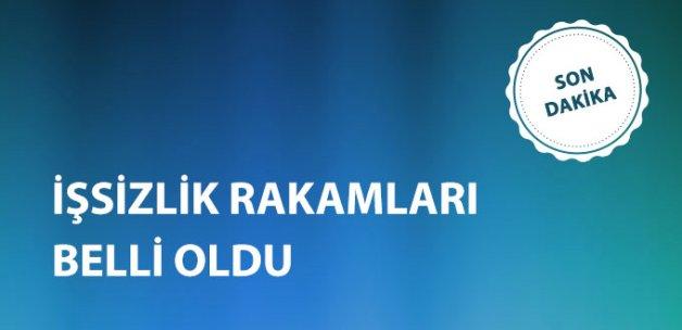 Türkiye'de İşsizlik Oranı Arttı