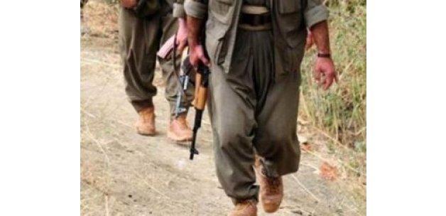 Van, Ağrı ve Mardin'de 6 terörist öldürüldü