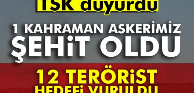 1 kahraman askerimiz şehit oldu, 12 terörist hedefi vuruldu
