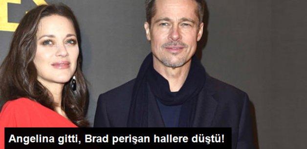 Angelina'dan Ayrılan Brad Pitt Perişan Hallere Düştü