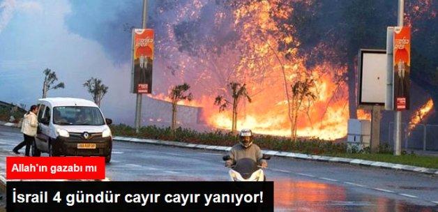 İsrail'de Çıkan Yangınlar 4 Gündür Söndürülemiyor