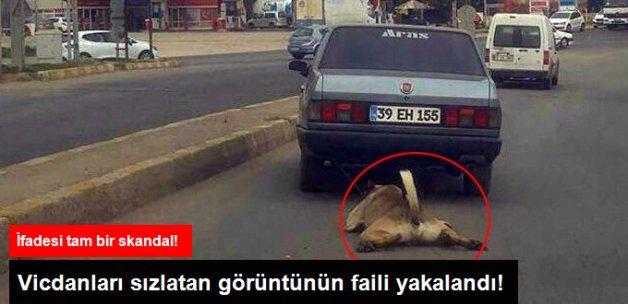 Otomobile Bağladığı Köpeği Metrelerce Sürükleyen Şahıs Yakalandı