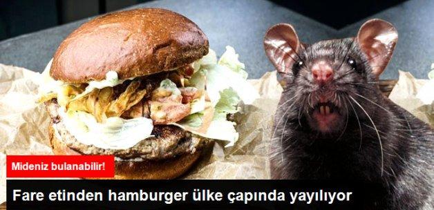 Rusya'da Restoranda Fare Burger Satılıyor
