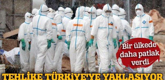 Son dakika: Kuş gribi salgını Türkiye'ye yaklaşıyor