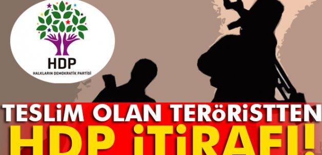 Teslim olan teröristten 'HDP' itirafı