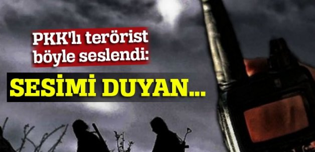 Şemdinli'de 2 terörist daha öldürüldü