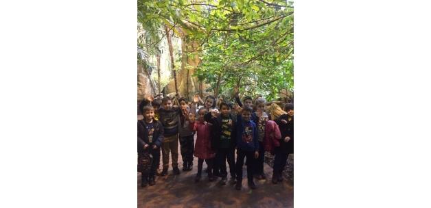 Serdivanlı öğrenciler İstanbul Akvaryumu gezdi