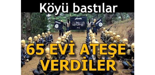 Terör örgütü DEAŞ 65 evi ateşe verdi!