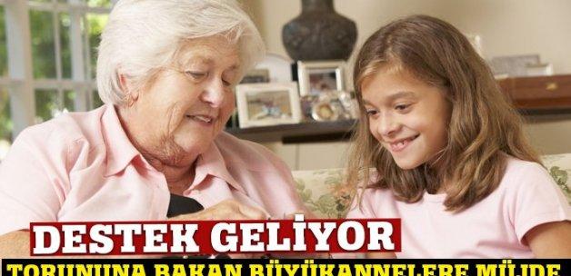 Torununa bakan büyükannelere destek