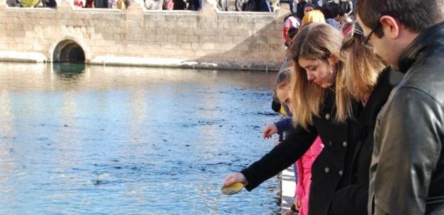Vatandaşlar güneşli havanın tadını Balıklıgöl'de çıkarıyor