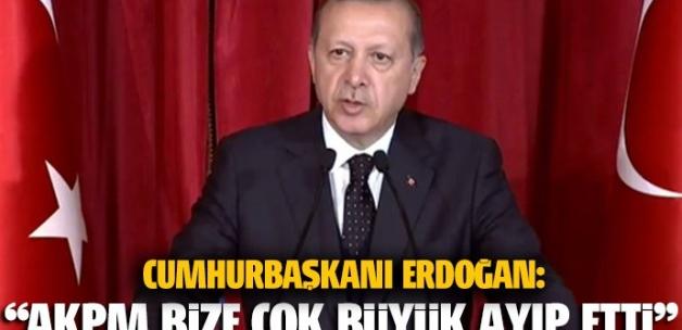 Erdoğan: Fransa'yı görmeyen AKPM bize ayıp etti