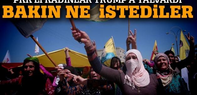 PKK'lı teröristler Donald Trump'a yalvardı