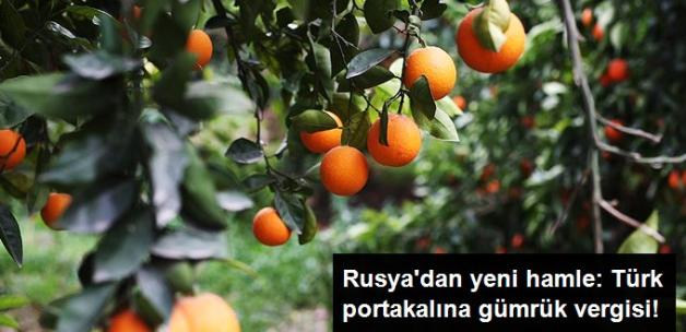 Rusya, Türk Portakalına Gümrük Vergisi Getiriyor