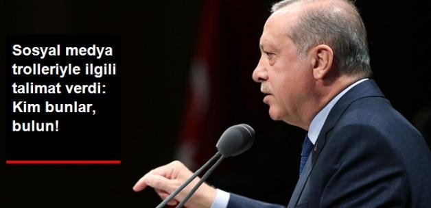 Erdoğan'dan Sosyal Medya Trolleri Yargıya Taşınsın Talimatı: Bulun Bunları