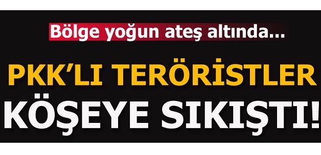 Muş'ta 16 kişilik PKK'lı terörist grup kıstırıldı!