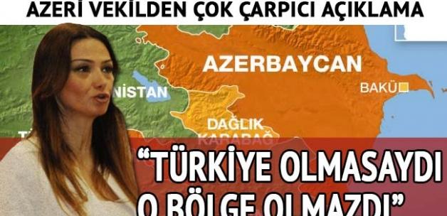 Paşayeva: Türkiye'nin Nahçıvan üzerindeki garantörlüğü olmasaydı, bugün Nahçıvan olmazdı