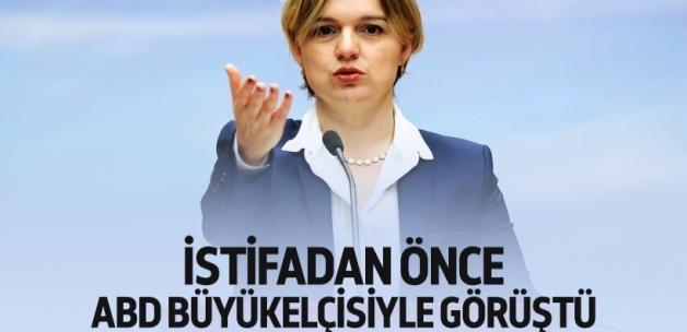 Selin Sayek Böke, ABD'nin projesi iddiası