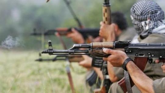 Van'da eylem hazırlığındaki 3 terörist ölü ele geçirildi