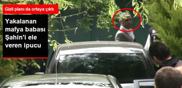 Yakalanan Mafya Babası Sedat Şahin'e Eşi Sayesinde Ulaşılmış