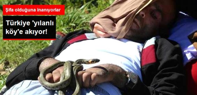 Yılanlı Köye Ziyaretçi Akını! Birçok Hastalığa İyi Geliyor