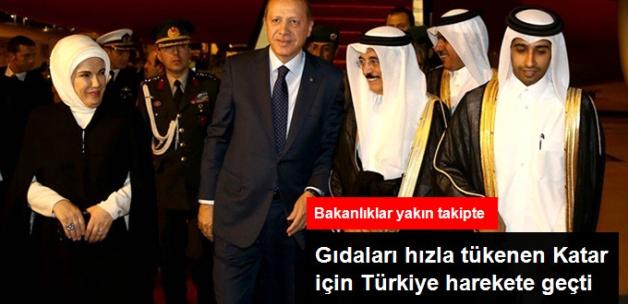 4 Haftalık Tahıl Stoku Kalan Katar İçin Türkiye Harekete Geçti