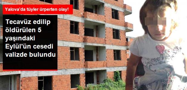 Bonzai Bağımlısı, Parktan Kaçırdığı 5 Yaşındaki Eylül'ü Tecavüz Edip Öldürdü!