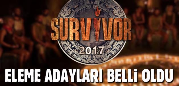 Survivor'da eleme adayları belli oldu (Dokunulmazlık oyununu kim kazandı?)
