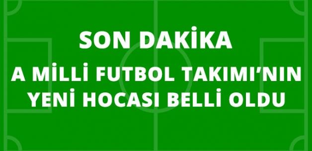 A Milli Futbol Takımımızın Yeni Teknik Direktörü Şenol Güneş Oldu