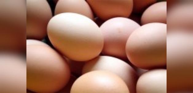 Avrupa'da yumurta skandalından sonra şimdi de