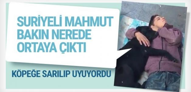 Köpeğe sarılıp uyuyordu Suriyeli Mahmut orada görüntülendi