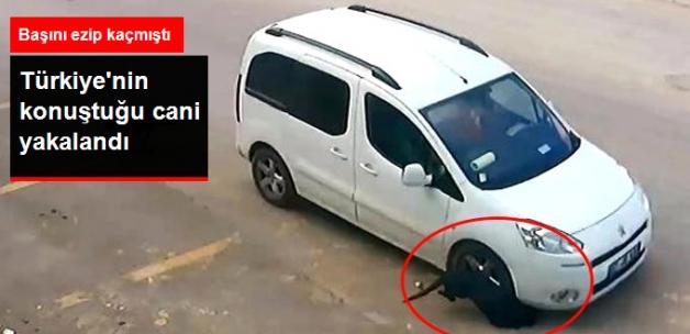 Köpeğin Başını Ezip Kaçan Sürücü, Yakalandı