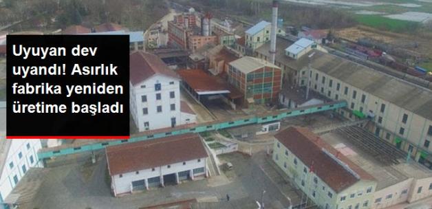 Alpullu Şeker Fabrikası, Yeniden Üretime Başladı