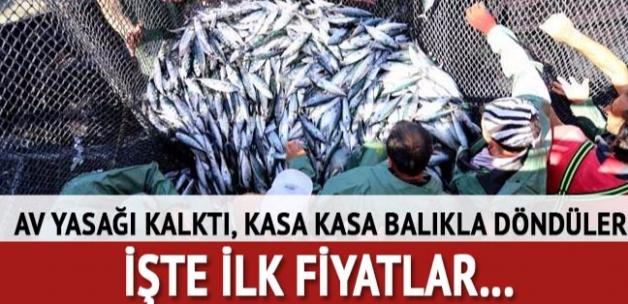 Av yasağının kalkmasıyla balıkçılar kasa kasa balıkla döndüler