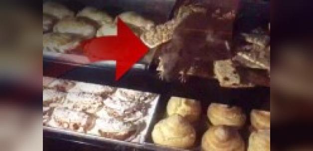 Pastanede iğrenç görüntü: Fare üzerilerinde geziyor!