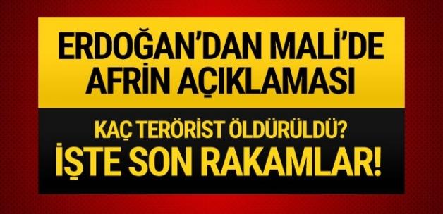 Erdoğan: Zeytin Dalı Harekatı'nda 2348 teröristi etkisiz hale getirdik