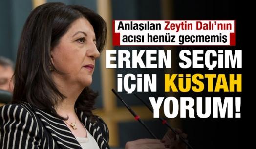 HDP'den erken seçim için küstah açıklama!