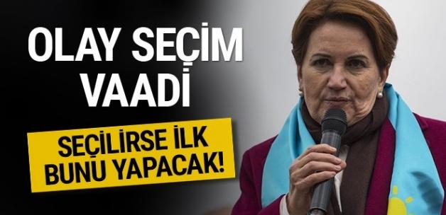 İYİ Parti'den olay yaratacak seçim vaadi!
