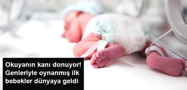 İlk Bebeklerin Dünyaya Geldi