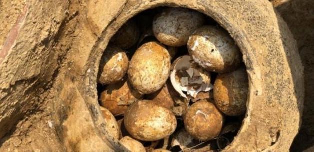 2500 yıllık kırılmamış yumurta bulundu