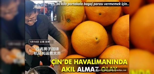Çin'de 4 kişi ek bagaj ücreti ödememek için 30 kilo portakal yedi