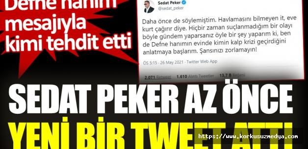 Sedat Peker az önce yeni bir tweet attı. Peker Defne hanım mesajıyla kimi tehdit etti