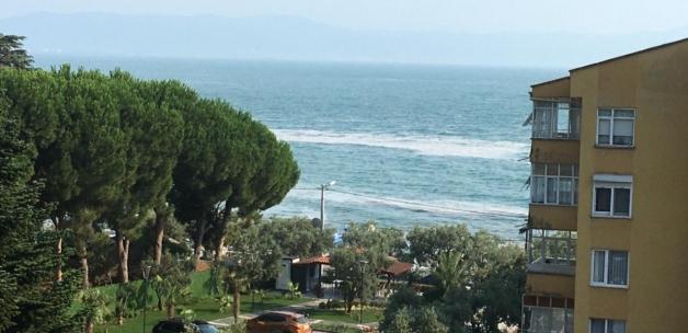 Bursa'nın Gemlik sahillerinde yine müsilaj görüldü