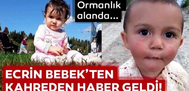 Son dakika haberi: 1.5 yaşındaki Ecrin Kurnaz'ın cansız bedeni ormanlık alanda bulundu