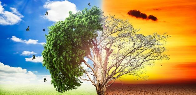 İklim kaynaklı felaketlerde 17 binden fazla kişi öldü