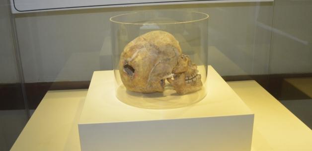 Samsun'da 3 bin yıllık kafatası bulundu! Üzerindeki izi gören şaştı kaldı
