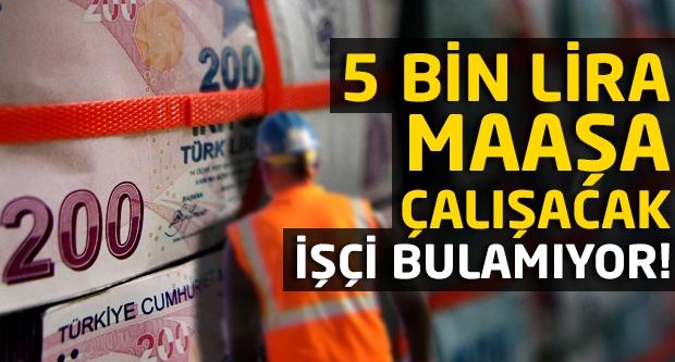 5 bin lira maaşa çalışacak işçi bulamıyor!