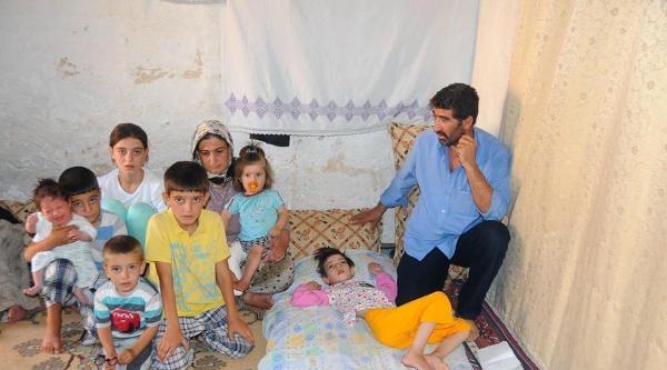 6 Çocuklari Tümörden Öldü, 7'ncisi Ölümle Pençeleşiyor
