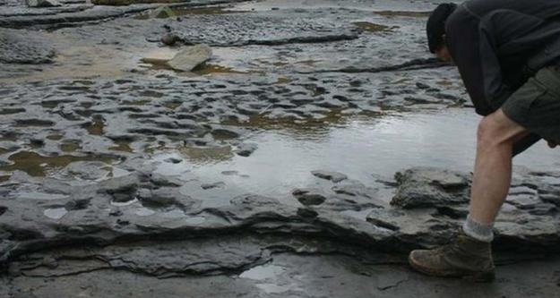 800 bin yıllık ayak izleri...